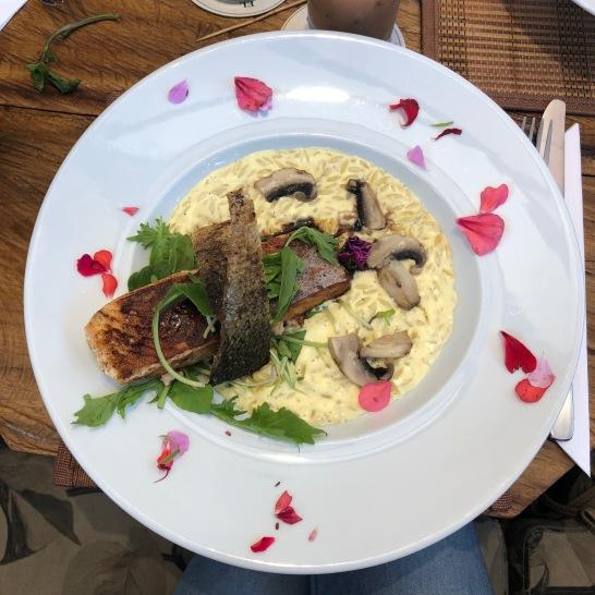 Saumon, riz et champignons